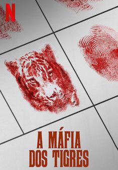 A Máfia dos Tigres 1ª Temporada Completa