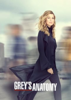 Grey's Anatomy 14ª Temporada Completa