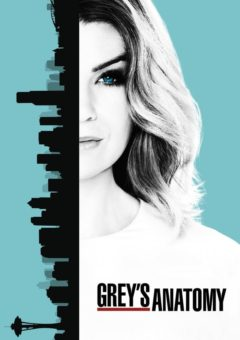 Grey's Anatomy 15ª Temporada Completa