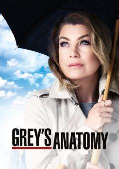 Grey's Anatomy 16ª Temporada Completa