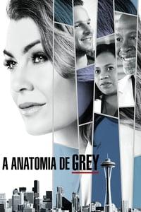 Todas as Temporadas Completas – Grey's Anatomy