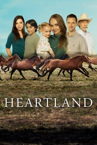 Todas as Temporadas Completas – Heartland