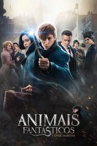 Animais Fantásticos e Onde Habitam 2 Filmes